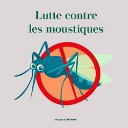 """""""Ne laissons pas les moustiques s'installer"""""""